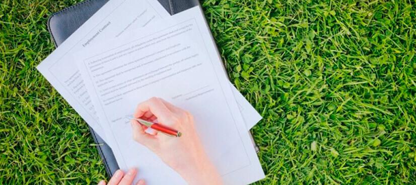 Статус земельного участка - как узнать и как использовать по назначению?